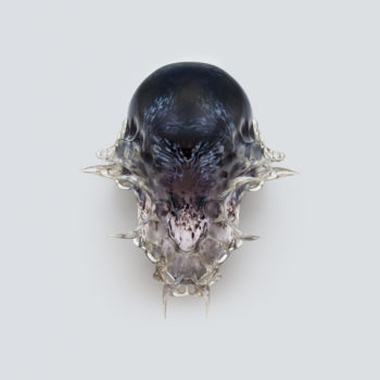 Fear and Love - review-Vespers by Neri Oxman. Image courtesy the artist