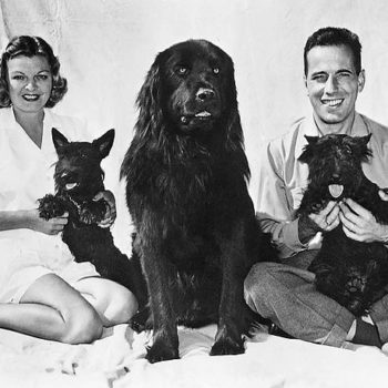 40s Fashion Men, Humphrey Bogart, Mayo Methot and Dog, 1944