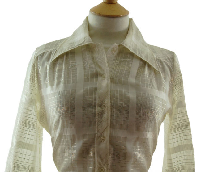 close up of 70s Transparent Netted Blouse