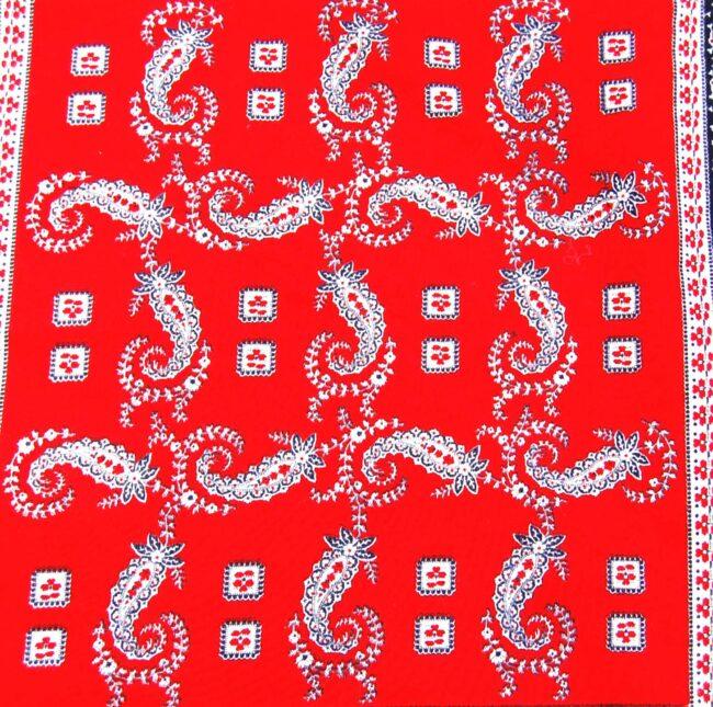Close up of Red Paisley Bandana