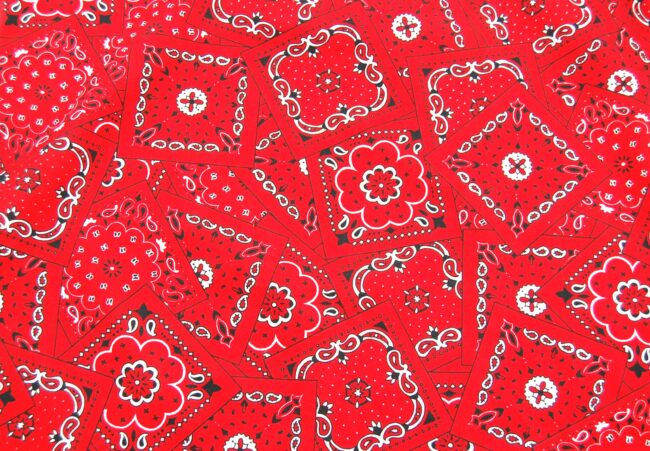 Close up of Red And White Bandana