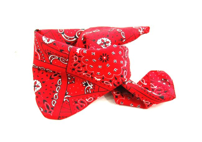 Red And White Bandana