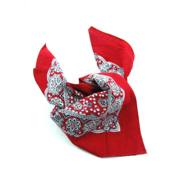 Vintage Red Paisleys Bandana