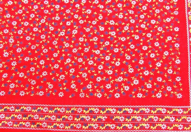 Close up of Daisy Print Red Bandana