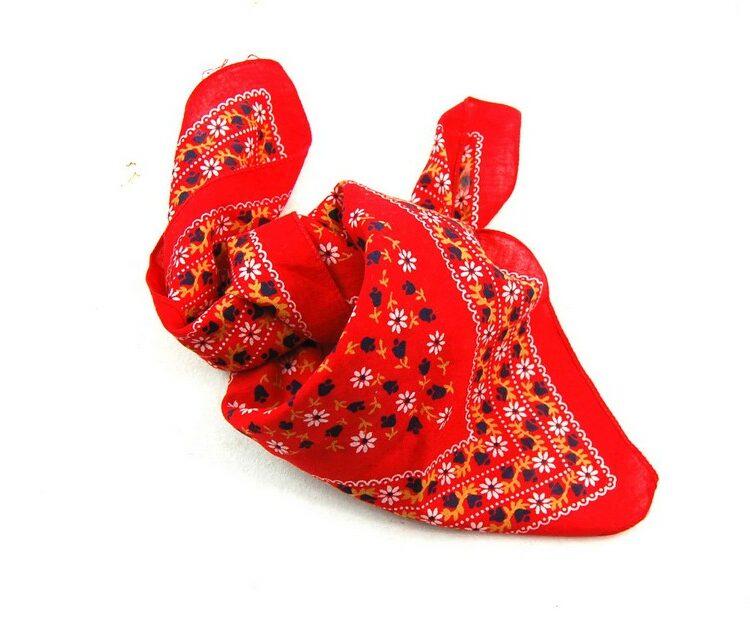 Daisy Print Red Bandana