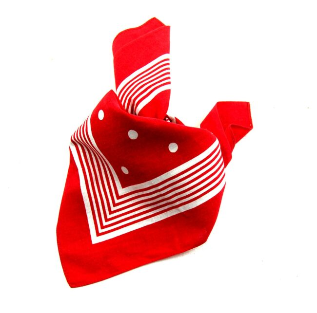 Polka Dots and Stripes Bandana