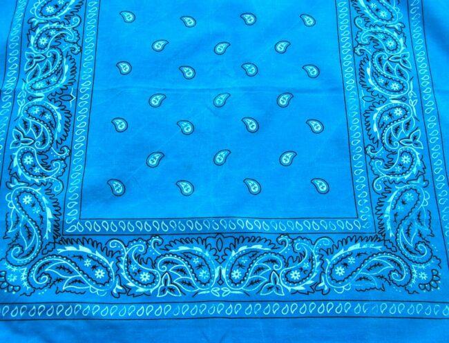 Close up of Blue Paisley Print Bandana