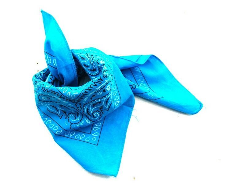 Blue Paisley Print Bandana